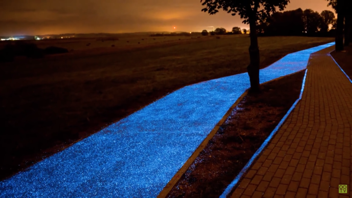 glow in the dark path