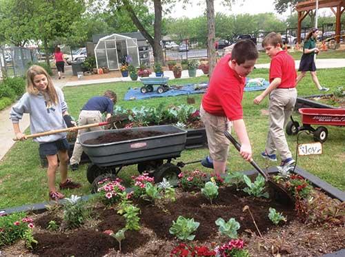 Children gardening in a schoolyard