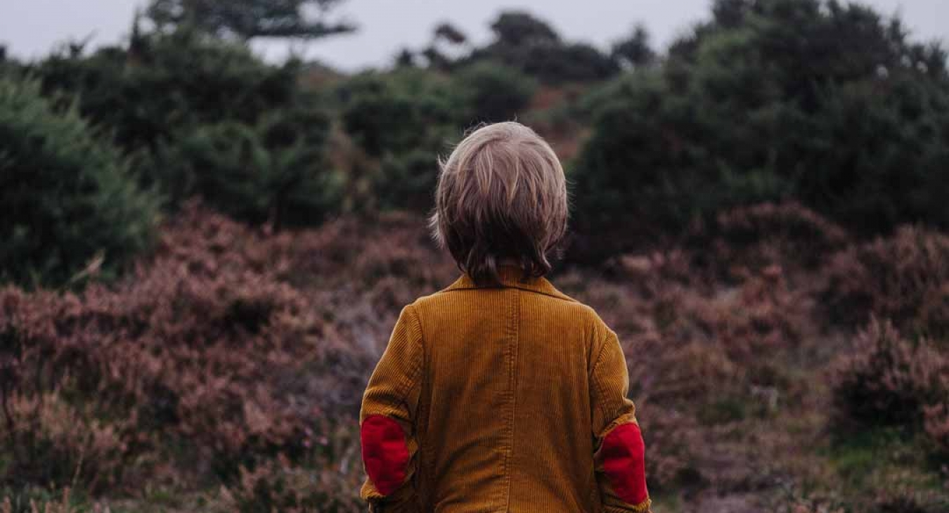 Young boy exploring nature