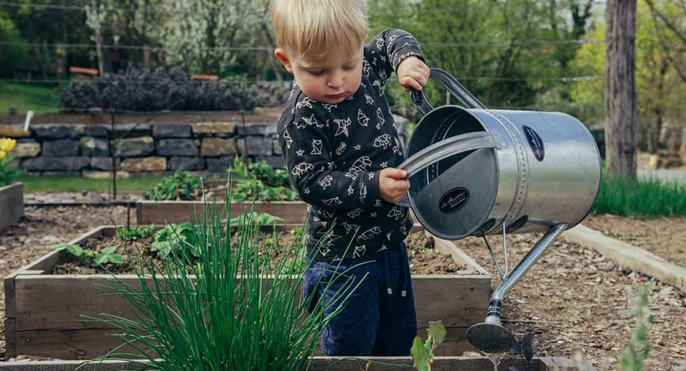 These 5 Fun Activities Will Teach Your Kids Sustainability