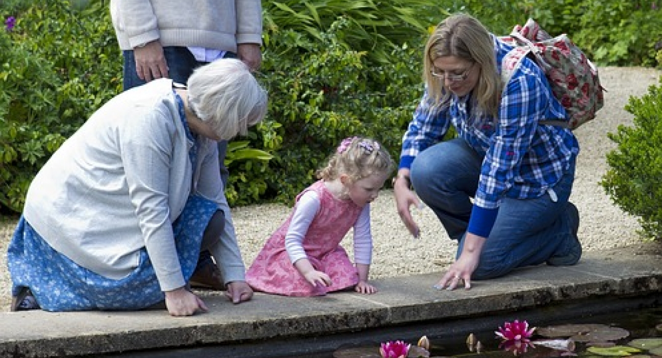 Little girl and grandparents at a lily pond