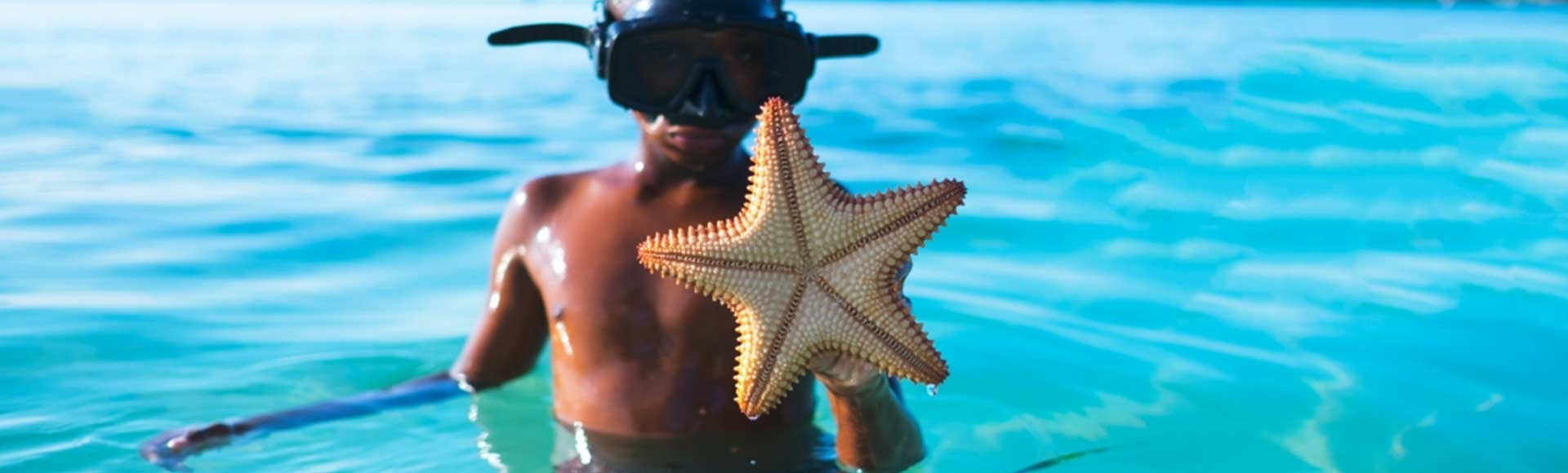 boy swimming in the ocean with a star fish